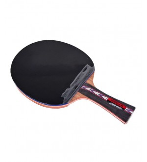 DHS HURRICANE  狂飚 NO.2 SHAKEHAND RACKET -Long Handel