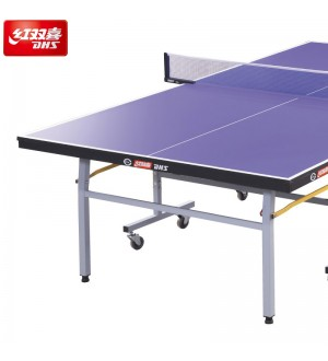 DHS T2023 Pingpong Table