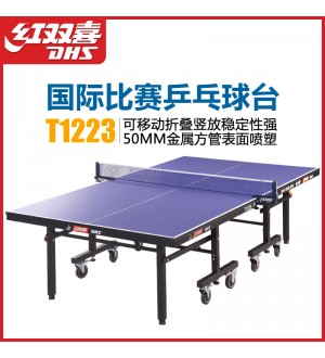 DHS T1223 Pingpong Table
