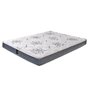DreamStar Perfect Dreamer Foam Mattress