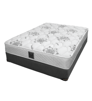 DreamStar Ortho Delux Mattress