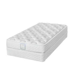 DreamStar Perfect Dreamer Foam Mattress