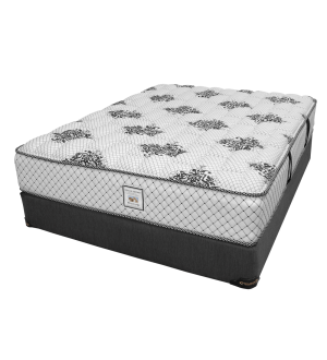 DreamStar Special Edition Mattress
